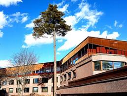Codina Architectural Hanassari Cultural Center Metal Mesh