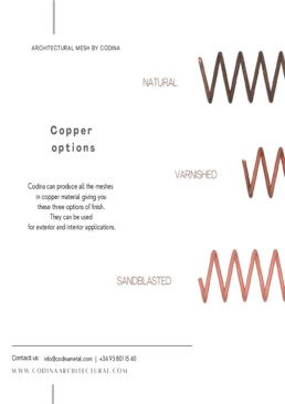 Copper options